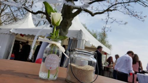 Elbe1 Hochzeit
